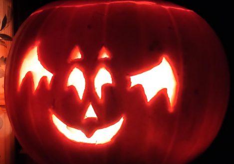 a bat carved into a pumpkin